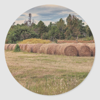 北中部のアーカンソーの収穫期 ラウンドシール