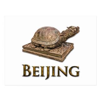 北京のカメ ポストカード