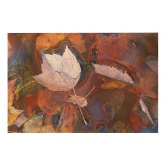 北東米国水溜の紅葉との ウッドウォールアート