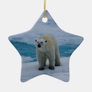 北極パック氷に関係して下さい セラミックオーナメント