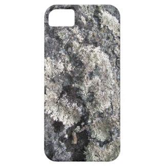 北極石 iPhone SE/5/5s ケース