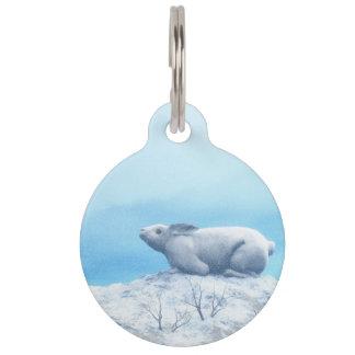 北極arcticusノウサギ、lepusまたは北極のウサギ ペット ネームタグ