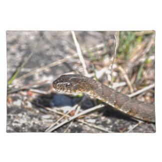 北水ヘビのハ虫類の野性生物の写真 ランチョンマット