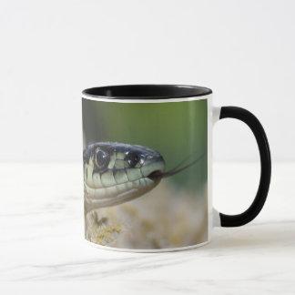 北西ガーター・ヘビ マグカップ