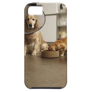 医学つばのモデルのゴールデン・リトリーバー犬 iPhone SE/5/5s ケース