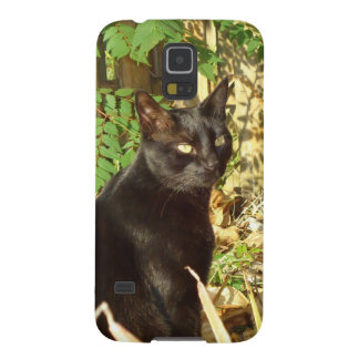 午前日曜日中黒猫 GALAXY S5 ケース