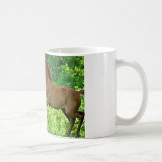 半分アラビアの子馬 コーヒーマグカップ