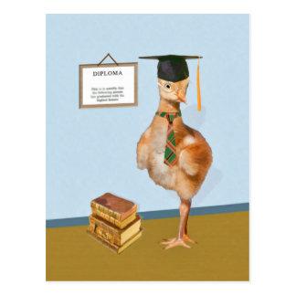 卒業、ベビーのSandhillクレーン ポストカード