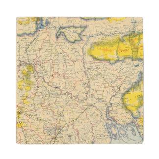 南アジア、インド、バングラデシュ ウッドコースター