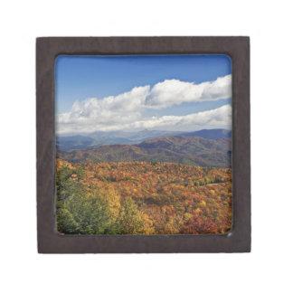 南アパラチア山脈の秋の眺め ギフトボックス