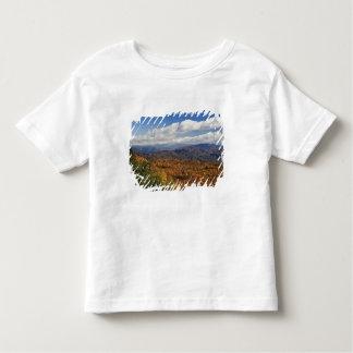 南アパラチア山脈の秋の眺め トドラーTシャツ