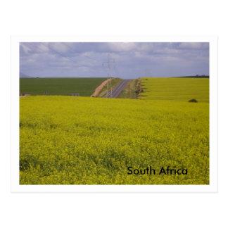 南アフリカの景色 ポストカード