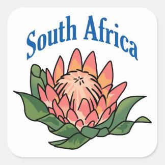 南アフリカの花 スクエアシール