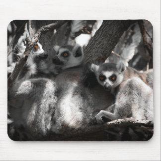 南アフリカのLemursのトリオ マウスパッド