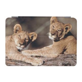南アフリカ共和国のライオンの子 iPad MINIカバー