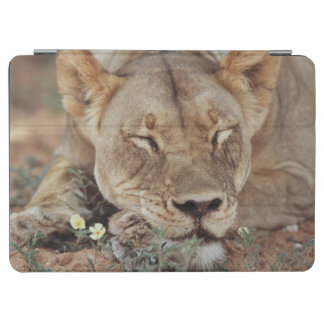 南アフリカ共和国、Kalahariのオリックスの国立公園2 iPad Air カバー
