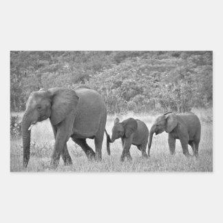 南アフリカ象の系列 長方形シール