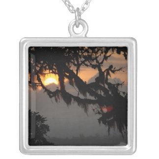 南アメリカ、エクアドルの雲の森林場面 シルバープレートネックレス