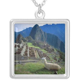 南アメリカ、ペルー。 ラマは丘で休みます シルバープレートネックレス