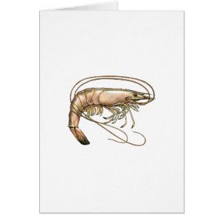 南エビの芸術 カード