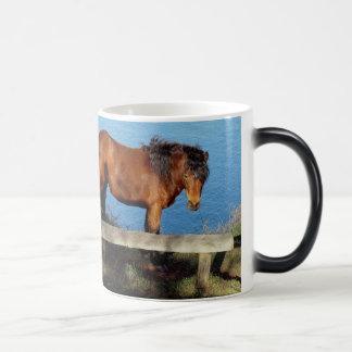 南デボンの遠隔海岸道のDartmoorの子馬 モーフィングマグカップ