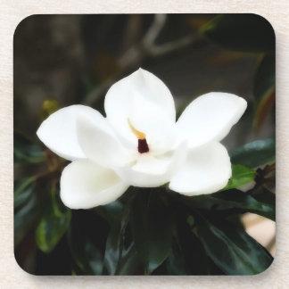 南マグノリアの花のコーヒー飲み物用コースター コースター