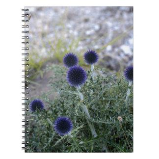 南地球アザミ(Cardoのpallotta) ノートブック