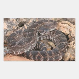 南太平洋のガラガラヘビ 長方形シール