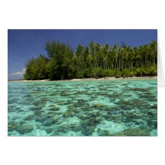 南太平洋、フランス領ポリネシア、Moorea 3 カード