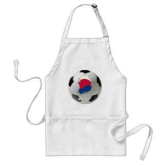 南朝鮮のフットボールのサッカー スタンダードエプロン