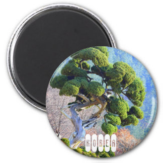 南朝鮮の千年間の杜松の木 マグネット