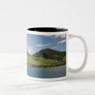 南東ライオン山のArialの眺め ツートーンマグカップ