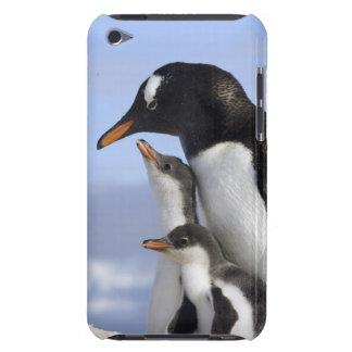 南極半島、Neko港、Gentoo Case-Mate iPod Touch ケース