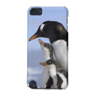 南極半島、Neko港、Gentoo iPod Touch 5G ケース