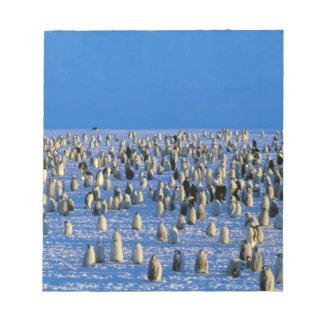 南極大陸のオーストラリアの南極領域、5 ノートパッド