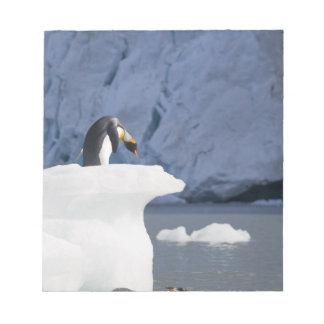 南極大陸のジョージアの南島(イギリス)、王13 ノートパッド