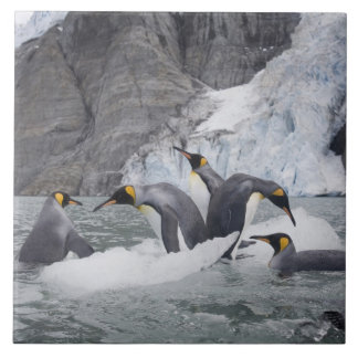 南極大陸のジョージアの南島(イギリス)、王14 タイル