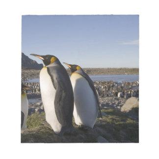 南極大陸のジョージアの南島(イギリス)、王6 ノートパッド