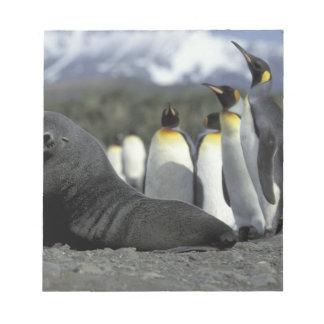 南極大陸のジョージアの南島。 南極毛皮 ノートパッド
