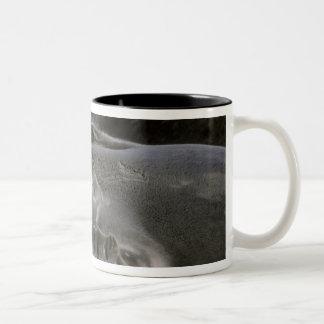 南極大陸のネルソンの島。 Furlの南シール ツートーンマグカップ