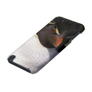 南極大陸の副南極島、南5 iPod TOUCH 5G ケース