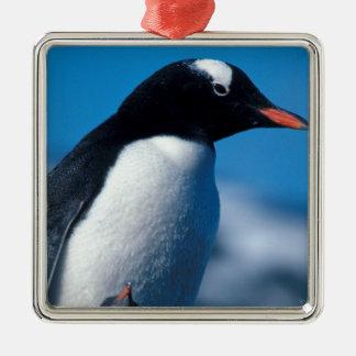 南極大陸の南副南極島 メタルオーナメント