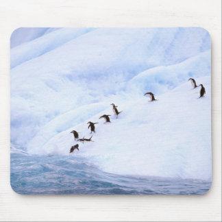南極大陸の南極半島。 Chinstrap マウスパッド