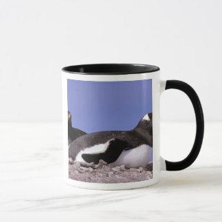 南極大陸の南極半島、Peterman マグカップ
