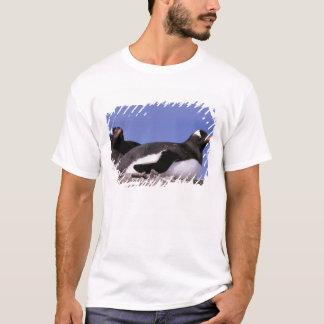 南極大陸の南極半島、Peterman Tシャツ
