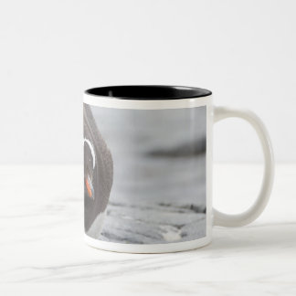 南極大陸の南極半島。 Petermann ツートーンマグカップ