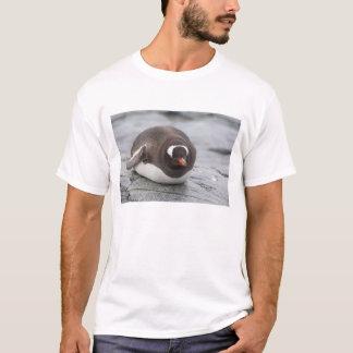 南極大陸の南極半島。 Petermann Tシャツ
