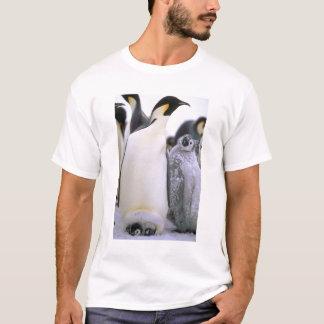 南極大陸の南極半島、Weddellの海、2 Tシャツ