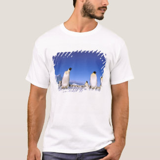 南極大陸の南極半島、Weddellの海、3 Tシャツ