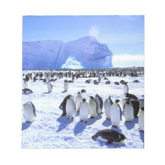 南極大陸の南極半島、Weddellの海、5 ノートパッド